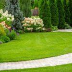 Get Installed Best Grass Carpet Dubai