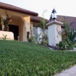 Buy Fake grass in Dubai. UAE
